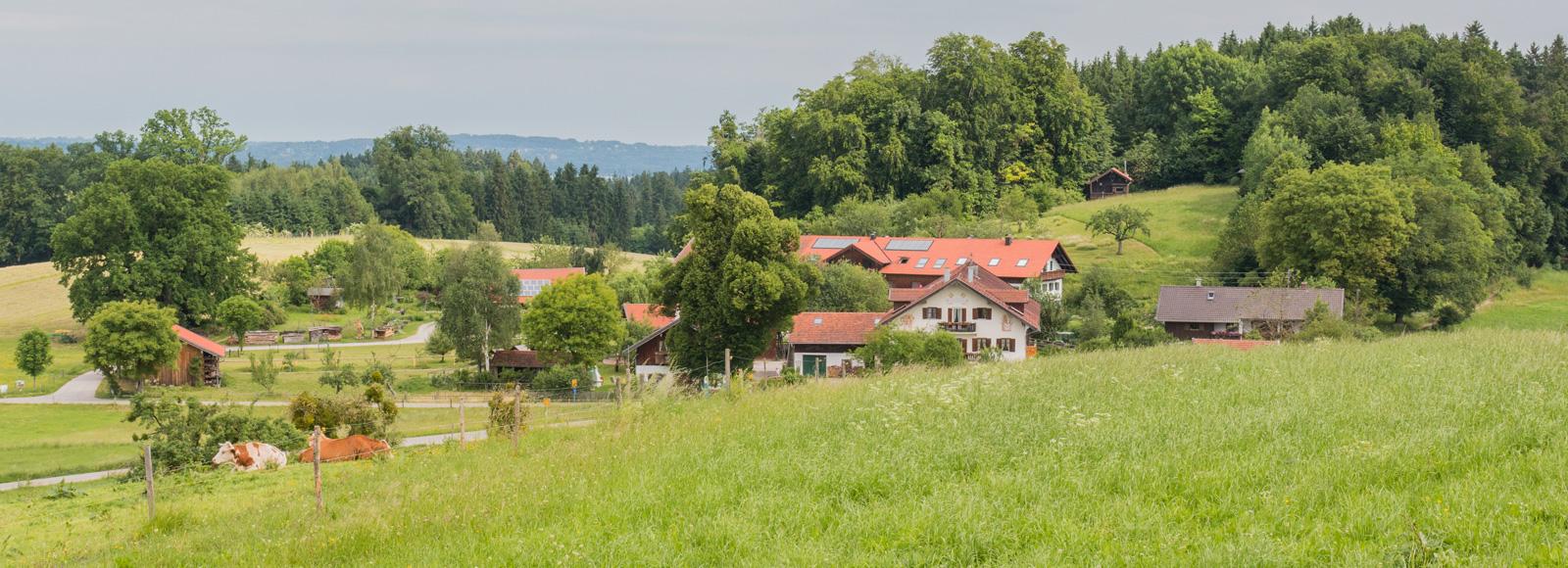 Mesnerhof vom Kirchberg