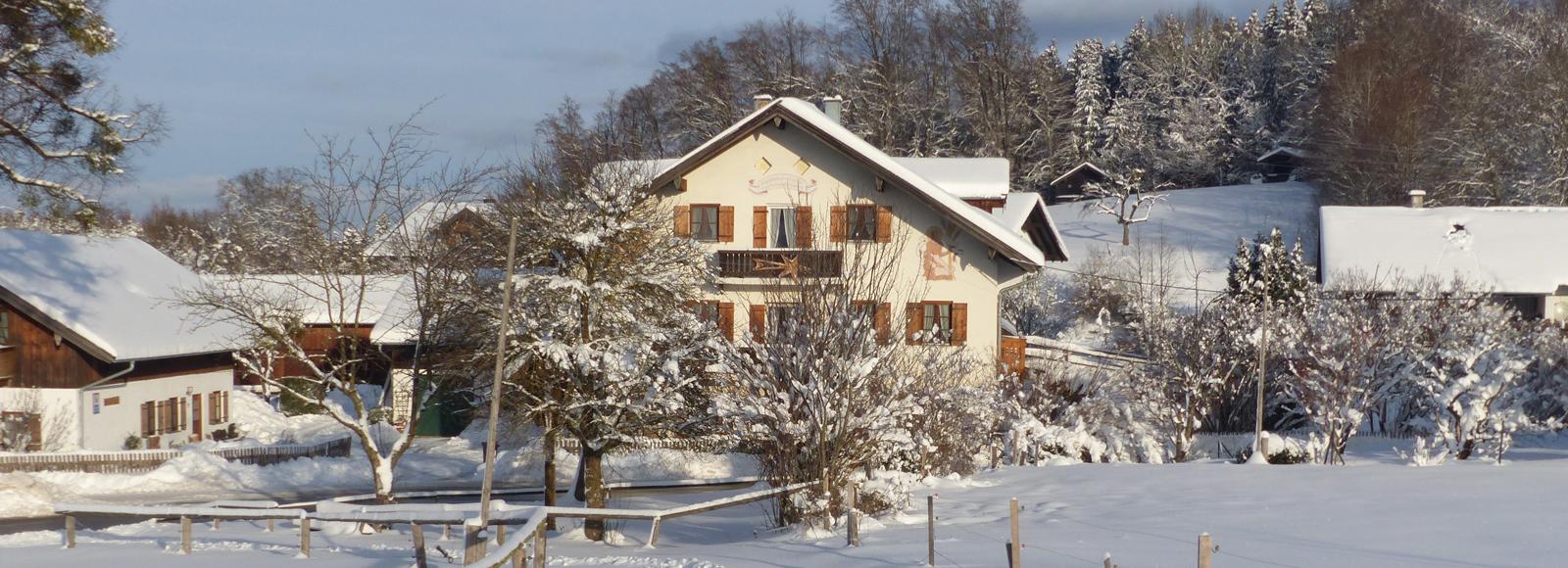 Mesnerhof im Winter